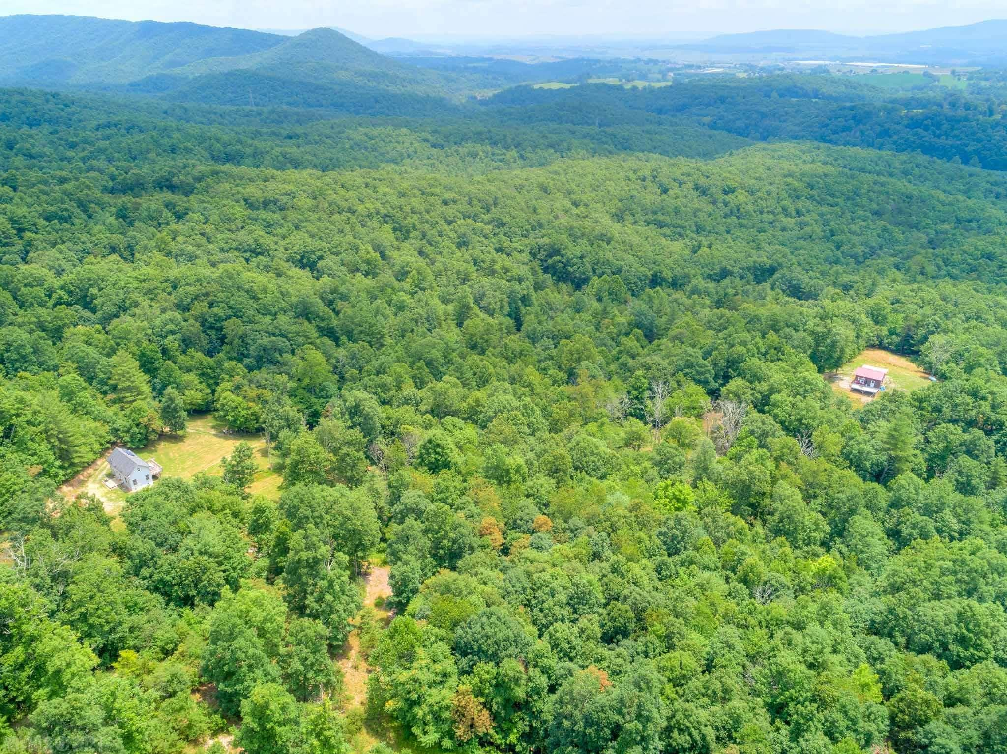 """Are you looking for a great place to unwind, hunt, hike & enjoy being off the grid? Then look no further! This 91 acre tract includes 2 """"off the grid"""" homes that have an artesian well, solar power, propane and generator. This would be perfect for a hunting property or weekend getaway. There are trails throughout the property & wildlife abound. It's peaceful, it's private, and it can be yours! Schedule your showing today!  Sellers believe one home was built in 2009 & the other 2012. The homes are being sold as is - everything conveys."""
