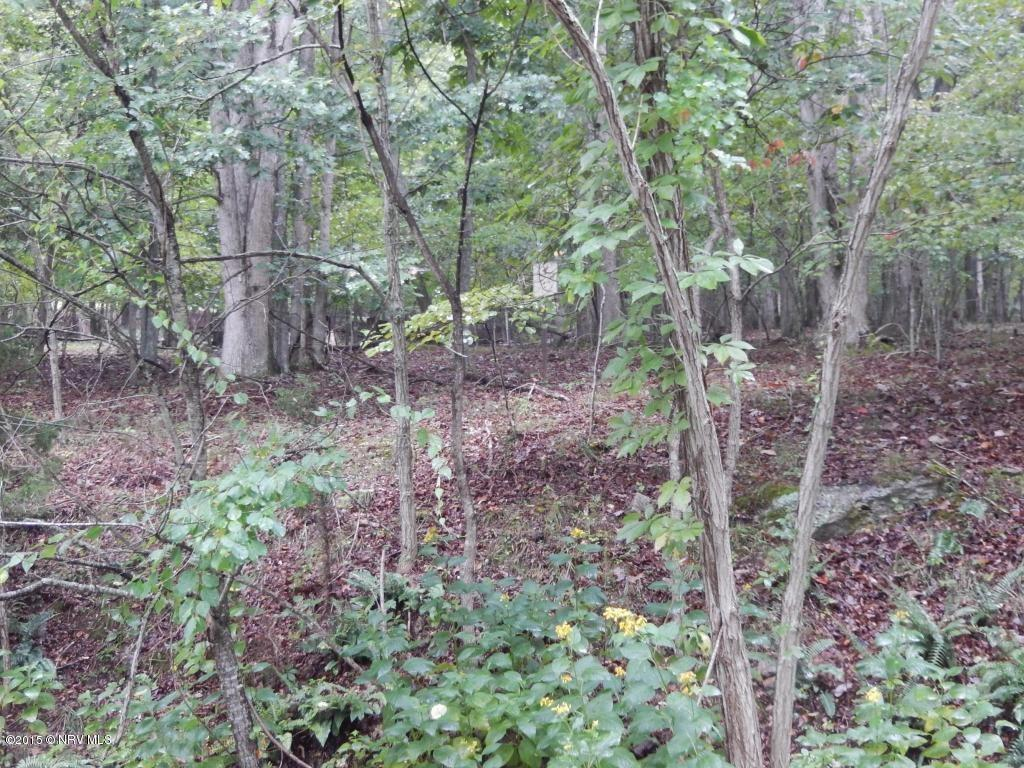 Loaded with Marketable Timber Great Hunting Land