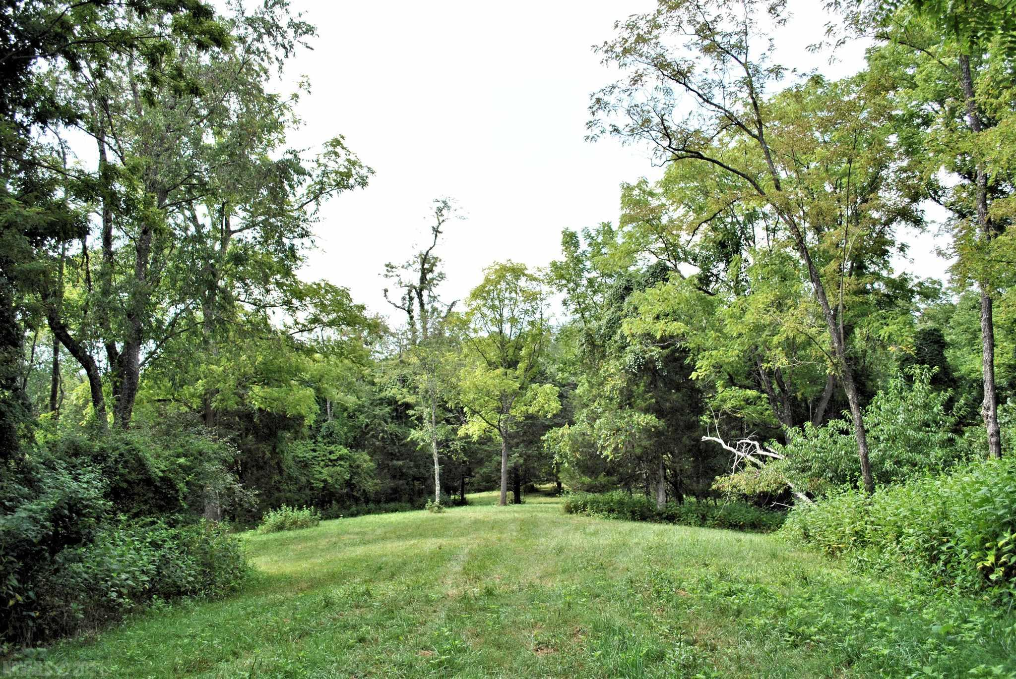 Gorgeous building site on this 24+ acre lot. A gate and road to the top have already been put in and a creek runs through the property. Property has already been perked for a septic system.  Located just minutes to Auburn Schools, Shopping, Restaurants and Auburn Hills Golf Course and within 15 minutes of I-81 and downtown Christiansburg.