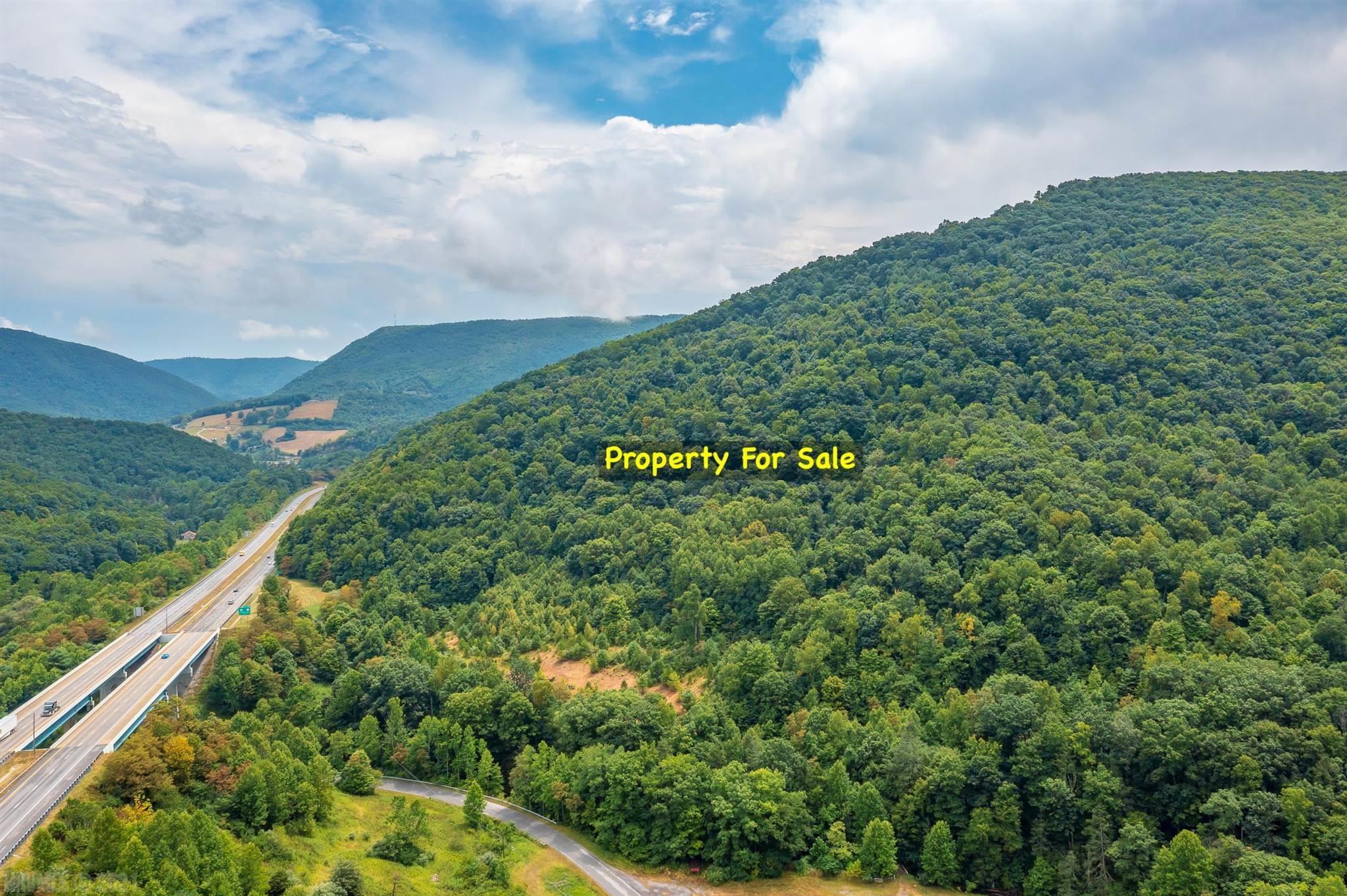 +/-72.5 acres of mountain land just off I-77 in Bland County, VA. This property has creek frontage on Laurel Creek and would be perfect for hunting and fishing, riding your ATV's, or for building that small cabin in the woods that you've always wanted. Easy access from a paved, state maintained road and a small bridge crossing the creek is already in place. On top of it all, there is even public water availability at the road frontage! Located just on the VA side of East River Mountain in Rocky Gap, VA.