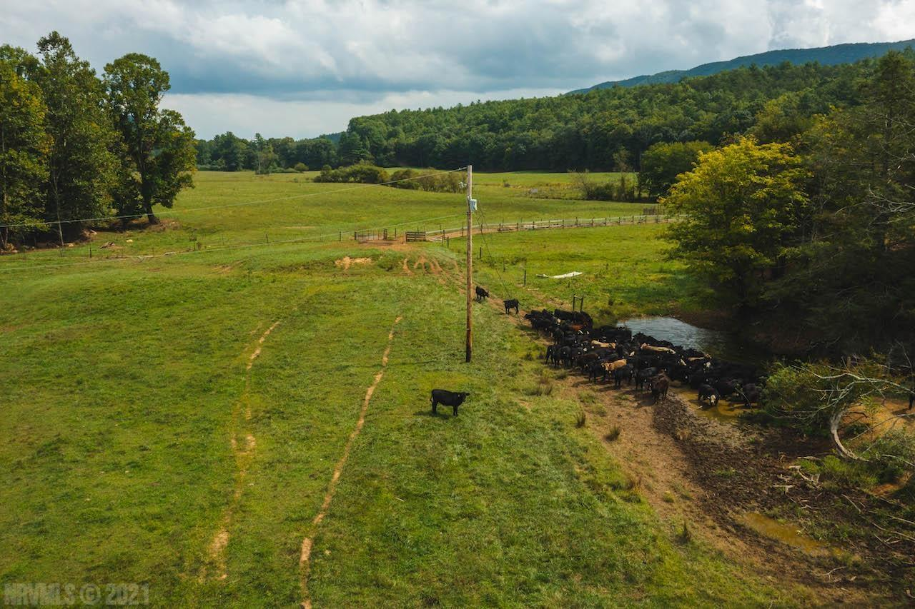 Online Only Auction ending November 11th at 4 PM. Price is starting bid, not reserve. You have the opportunity to purchase a stunning farm for sale in Pulaski County VA. This property features 415 +/- acres of open and wooded land. It would be great for farming and has Little Creek running through. The wooded portion of the property had timber cut 50 years ago. Great pastureland and fencing make this property even more desirable! The property is located across from 1909 Little Creek Road, Dublin VA and between 2056 and 1702 Little Creek Road Dublin VA. The property has a lot of road frontage on Little Creek Road and adjoins Jefferson National Forest. Perfect for use as a private recreational retreat, a farm, or for building your dream country home! Survey for property is in progress. Auctioneer and Seller estimate property to be 415 acres approximately.