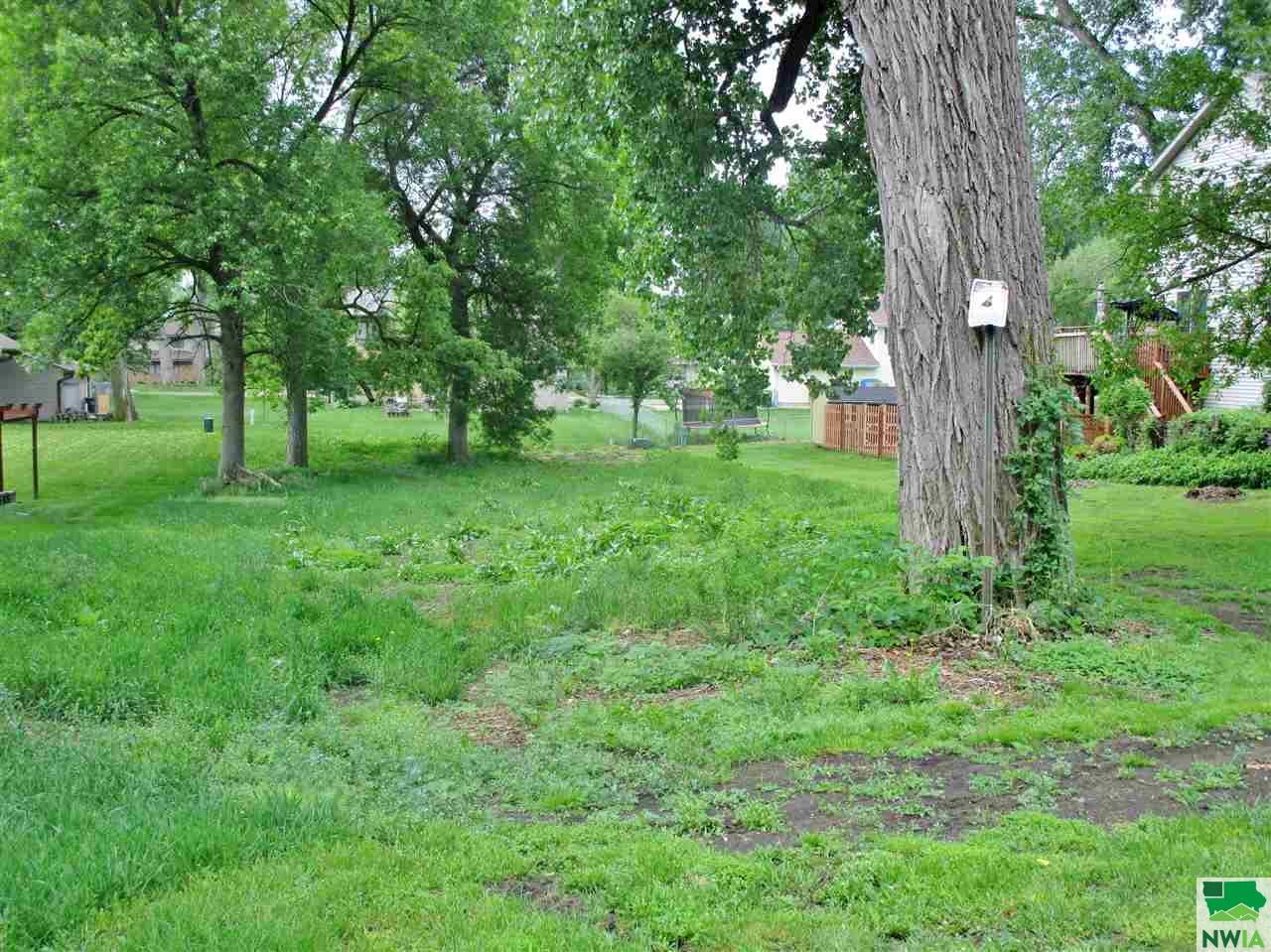 TBD Elm St, Dakota City, Nebraska 68731